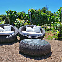 Outdoor Loungers at Casas del Bosque Vineyard in Casablanca, Chile <br /> Casas del Bosque offers lots more than a quick tour, tasting and then a shuffle towards the gift shop. For starters, you can make your own wine. From March 15 through April 30 you can be part of a harvesting team. In July and August you can partake in the pruning. And from October to April you can enjoy a meal at their Tanino Restaurant or arrange for a picnic on the estate.  My favorite was sunning in these cushioned chairs next to the vineyards while listening to the birds, smelling the fresh Chilean air and sipping a beautiful wine.