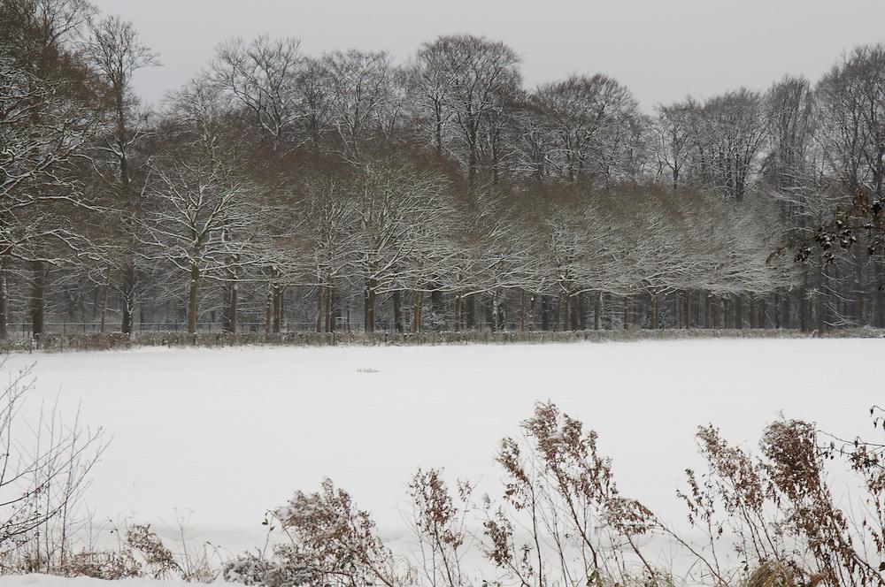Schoonoord Spiegelrust snow, sneeuw, winter, cold, wit, white