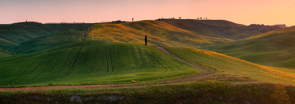Rolling hills, crop fields and scattered trees, the typical Tuscan country side. Taken at in the fields between San Quirico d'Orcia and Montalcino, this is stitched from twelve vertical frames.