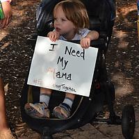 Zero -Tolerance #Pensacola