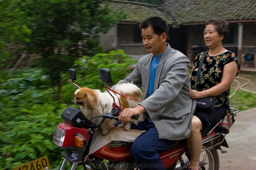 Lan Guihua's son, his dog, and a woman from the city of Chengdu ride a motorcycle he bought with proceeds from farming in Ganjiagou Village, Sichuan Province, China.  (Lan Guihua is featured in the book What I Eat: Around the World in 80 Diets.)