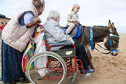 Wheelchair user and her carer watching a donkey on the beach whilst on a day trip to Skegness organised by Nottingham Disabled Friendship Club,