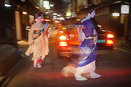 Geisha and 'maiko' (geisha apprentice).In Geisha's distric of Gion.Kyoto. Kansai, Japan.