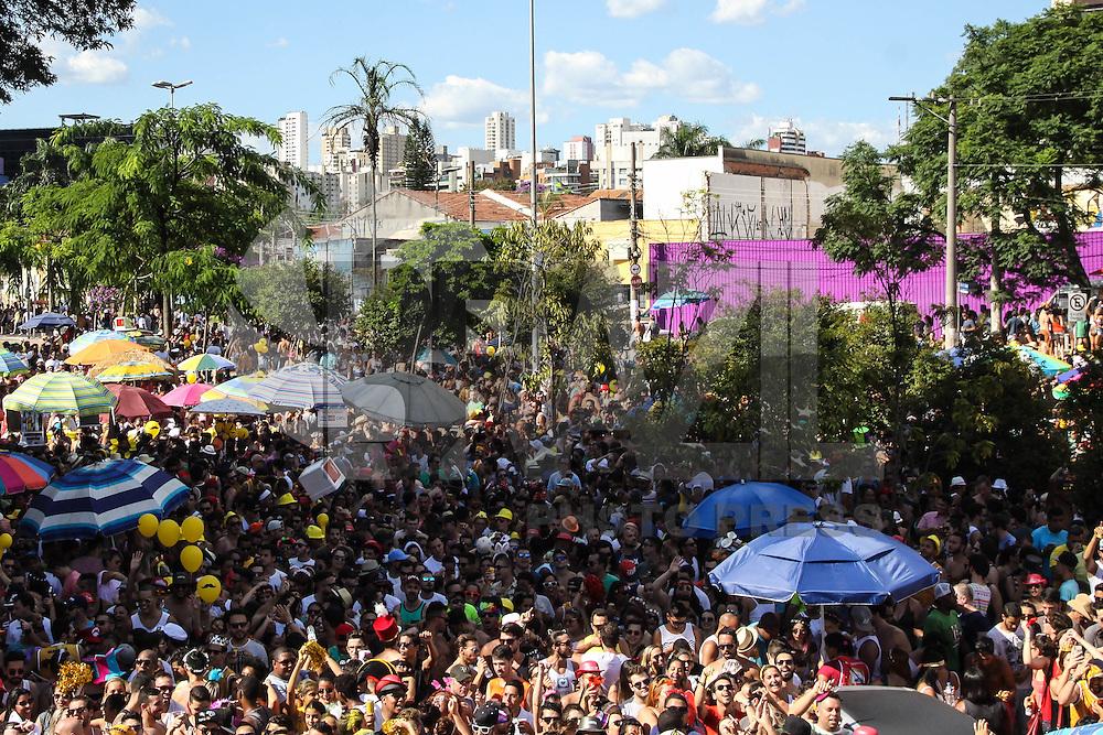 SÃO PAULO,SP, 31.01.2016 - CARNAVAL-SP - Foliões se divertem no bloco Gambiarra com Tiago Abravanel cantor no bairro de Pinheiros, região oeste de São Paulo, neste domingo, 31. (Foto: Marcos Moraes/Brazil Photo Press/Folhapress)