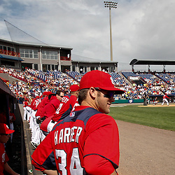 March 4, 2011; Viera, FL, USA; Washington Nationals right fielder Bryce Harper (34) watches from the dugout during a spring training exhibition game against the Atlanta Braves at Space Coast Stadium.  Mandatory Credit: Derick E. Hingle