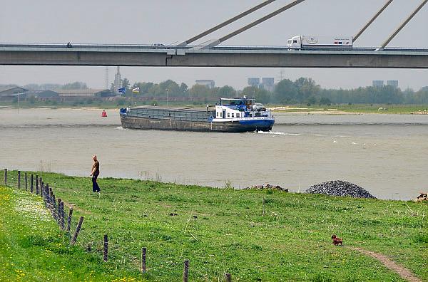 Nederland, Beneden Leeuwen, Waal, 7-5-2013Druk verkeer van binnenvaartschepen op de waal, rijn, vooral op en neer het duitse ruhrgebied en de haven van rotterdam.Foto: Flip Franssen/Hollandse Hoogte