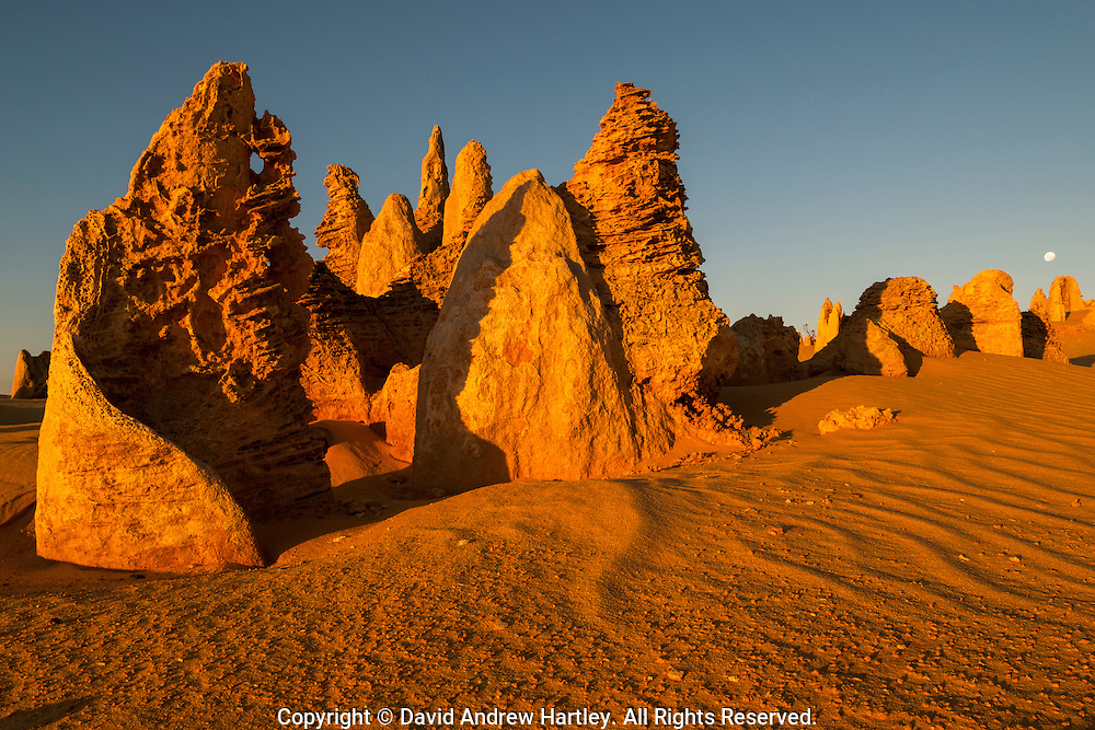 The moon rises over limestone formations, Pinnacles Desert, Australia