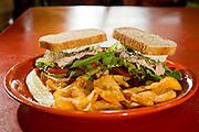 A turkey sandwich served with potato chips