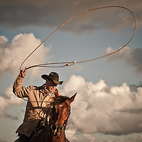 Cowboy prepares to throw the lasso from horseback against spring clouds. Petaluma California, USA.<br />