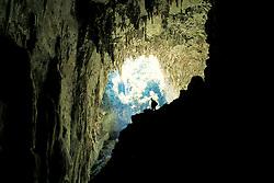 O Parque Estadual Turistico do Alto Ribeira e tambem conhecido como Petar e esta localizado no sul do Estado brasileiro de Sao Paulo, entre os municipios de Apiai e Iporanga, possui uma das maiores extensoes preservadas de Mata Atlantica, alem de ter uma das maiores concentracoes de cavernas do planeta com mais de 350 e uma imensa quantidade de cachoeiras./ The Tourist State Park of Alto Ribeira is also known as Petar and is located in the southern Brazilian state of São Paulo, between the municipalities and Iporanga Apiaí, has one of the largest expanses of preserved Atlantic Forest, and has one of the largest concentrations of caves on the planet with more than 350 and an immense amount of waterfalls.