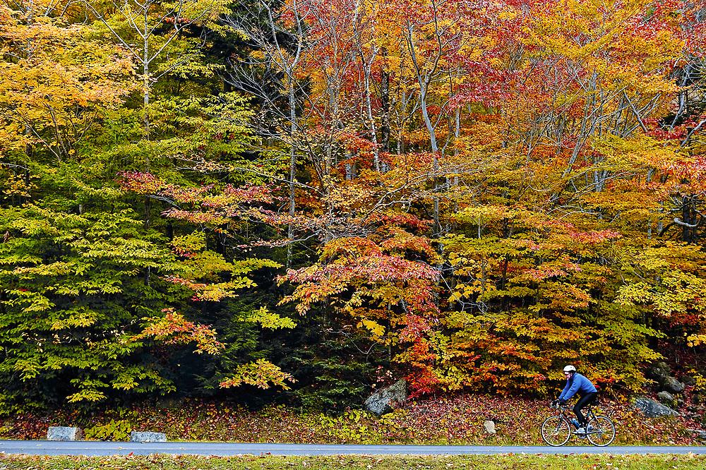 Man riding a bike through Acadia NP, Maine, ME