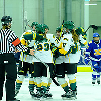 Goal celebration during the Women's Hockey Home Game on October 21 at Co-operators Arena. Credit Matt Johnson/©Arthur Images 2017