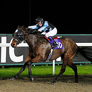 Loyalty and Adam McLean winning the 7.10 race