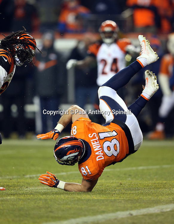 Denver Broncos tight end Owen Daniels (81) is upended while trying to catch the ball near the end zone during the 2015 NFL week 16 regular season football game against the Cincinnati Bengals on Monday, Dec. 28, 2015 in Denver. The Broncos won the game in overtime 20-17. (©Paul Anthony Spinelli)