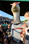 An inflatable mascot shaped like a giraffe entertains the crowd as members of Families Through Korean Adoption (FTKA) enjoy watching the Madison Mallards take on the Wisconsin Woodchucks during a baseball game at Warner Park in Madison, Wis., on July 9, 2016. (Photo by Jeff Miller, www.jeffmillerphotography.com)
