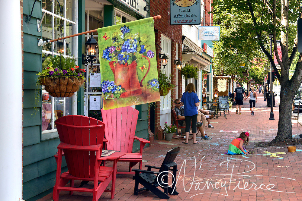 This is a section of historic downtown Davidson, NC. It is Main Street, directly adjacent to Davidson College.