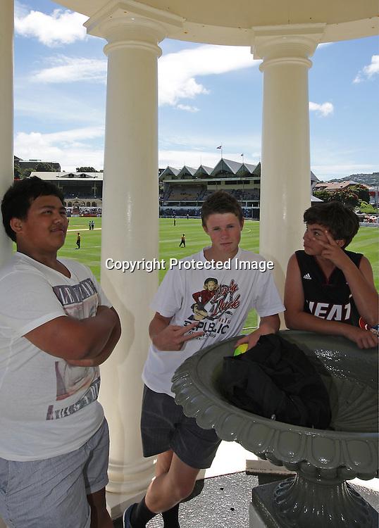 young cricket fans during their Twenty20 Cricket match - HRV Cup, Wellington Firebirds v Auckland Aces, 28 December 2011, Hawkins Basin Reserve, Wellington. . PHOTO: Grant Down / photosport.co.nz