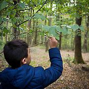2018_forêt de Sénart