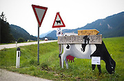 "The Alpine cattle drives of fall go by different names across the region. In Germany, they're ""viehscheid,"" in France and most of Switzerland they're ""desalpe,"" and in Austria they're called ""almabtreib"" (which means ""drive from the mountain pasture""). This sign near Nesselwängle, Austria, announced the 2014 event."