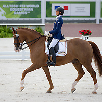 Para Dressage Team Test Grade IV