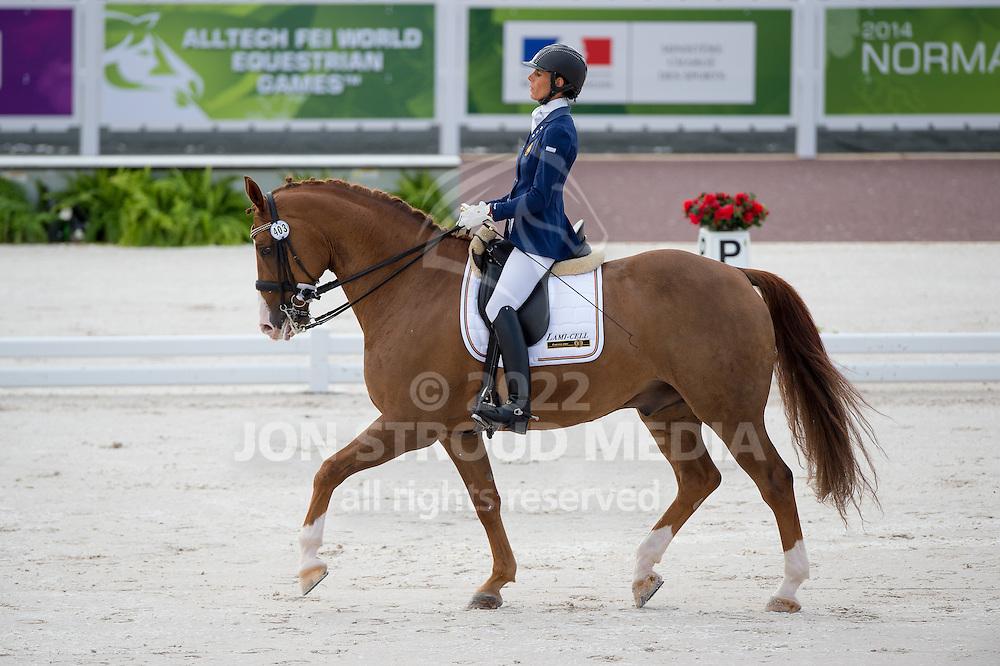 Michel George, (BEL), FBW Rainman - Team Competition Grade IV Para Dressage - Alltech FEI World Equestrian Games&trade; 2014 - Normandy, France.<br /> &copy; Hippo Foto Team - Jon Stroud <br /> 25/06/14