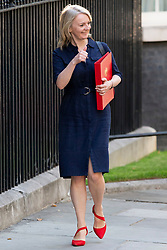 © Licensed to London News Pictures. 25/07/2019. London, UK. International Trade Secretary Liz Truss arrives in Downing Street for the first meeting of the new Cabinet. Later today Prime Minister Boris Johnson will speak in the House of Commons.  Photo credit: George Cracknell Wright/LNP