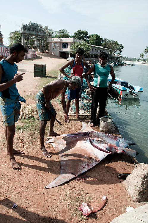 Man with machete ready to cut up the day's catch. In this case a manta ray caught in drift netting.