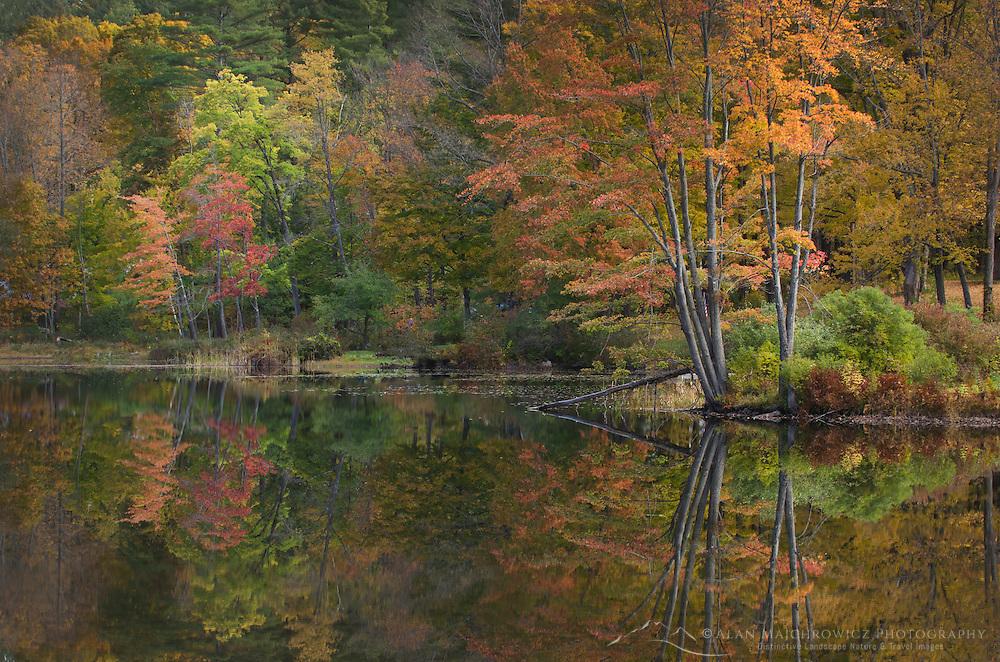 Vermont fall foliage reflection