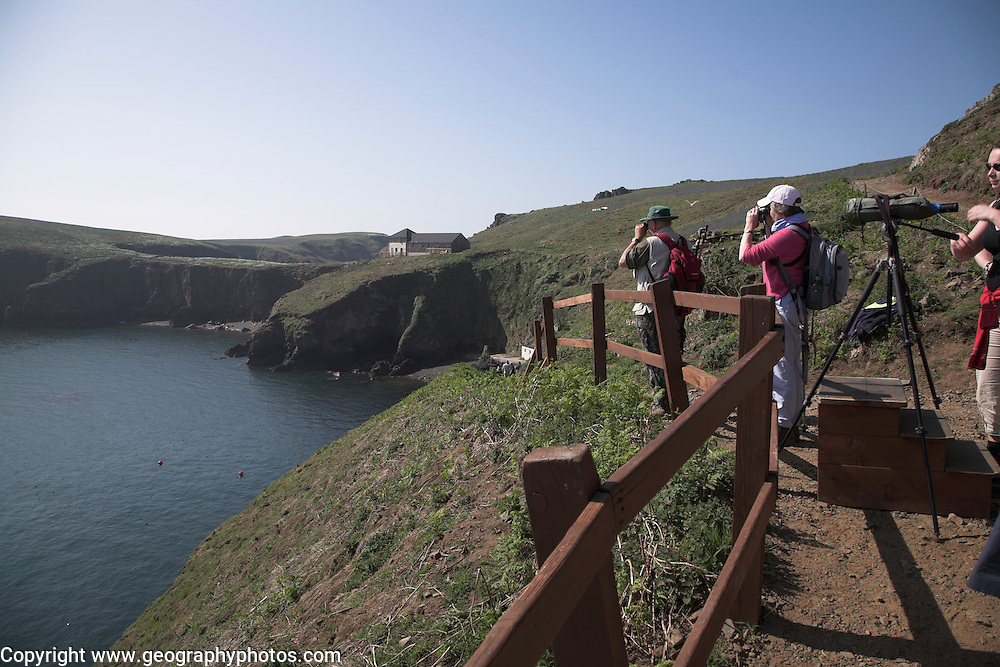 Ornithologists Skomer Island, Pembrokeshire, Wales
