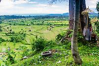 Bali, Karangasem, Tirta Gangga. A beautiful view north of Tirta Gangga. Green, fertile ricefields and in the background a blue sea.