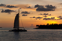 Catamaran sailing with tourists with a caribbean island behind at sunset.