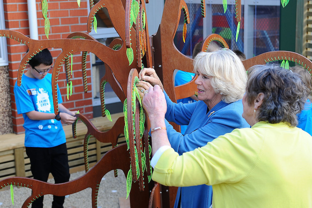 Camilla, Duchess of Cornwall visits the Wellington SPCA and hangs a leaf at the remembrance tree, Wellington, New Zealand, Saturday, November 07, 2015. Credit:SNPA / Getty, Mark Tantrum **POOL**