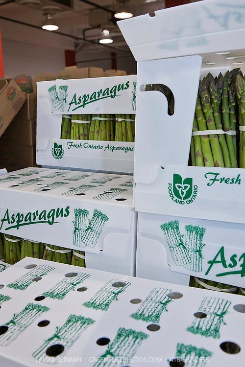 Boxes of Ontario grown asparagus.