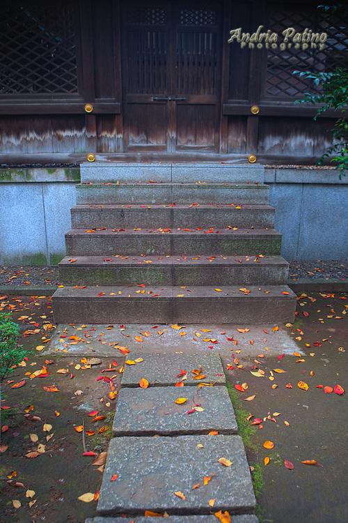 Kumano-jinga Shrine, Shinjuku Central Park