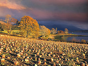 Autumn light over Loch Etive and Ben Cruachan, Argyll
