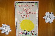 Thank You signs fill the hallways at Zanker Elementary School in Milpitas, California, on February 27, 2013. (Stan Olszewski/SOSKIphoto)