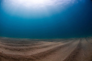 Sand sea bed photographed underwater