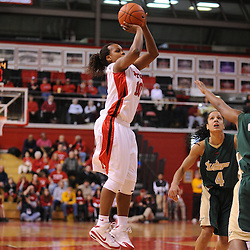 Jan 31, 2009; Piscataway, NJ, USA; Rutgers guard Epiphanny Prince (10) takes a shot during the first half of South Florida's 59-56 victory over Rutgers in NCAA women's college basketball at the Louis Brown Athletic Center