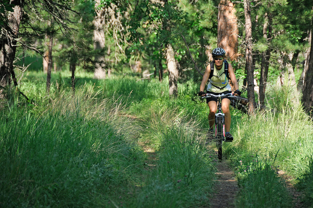 Bicycle rider on Grace Coolidge Walk-in Fishing Trail, Custer State Park, Black Hills, South Dakota, USA