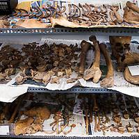 Nederland, Leiden, 31 oktober 2016.<br /> Onderzoek naar vondst Merovingisch grafveld in Echt.<br /> Een deel van de vondst wordt onderzocht in het lab in Leiden.<br /> Op de foto:beenderen opgeslagen in het LAB<br /> N.B dit zijn overigens geen botten uit het Merovingisch grafveld in Echt. <br /> <br /> Foto: Jean-Pierre Jans