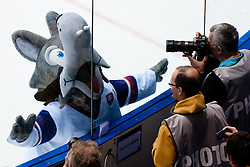 Official mascot Goooly in front of photographers during ice-hockey match between Finland and Slovakia of Group E in Qualifying Round of IIHF 2011 World Championship Slovakia, on May 7, 2011 in Orange Arena, Bratislava, Slovakia. (Photo by Matic Klansek Velej / Sportida)