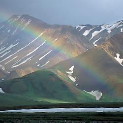 Denali National Park, AK. A rainbow set against the Alaska Range near the Toklat River.