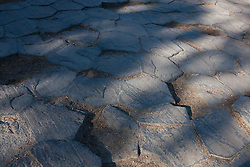 Tile pattern of 120 degree shrinkage cracks on top of columnar basalt rock formations, Devils Postpile National Monument, California, United States of America