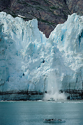 "A portion of the face of Margerie Glacier, one of the seven tidewater glaciers in Glacier Bay National Park and Reserve in southeast Alaska collapses with a loud rifle sounding ""crack"" and booming roar. The Margerie Glacier is located on the Tarr Inlet next to another tidewater glacier, Grand Pacific Glacier. Margerie Glacier's one mile wide face has a total height of 350 feet, out of which 250 feet is above the water level and 100 feet is beneath the water surface. For comparison purposes the Statue of Liberty is 307 feet tall. The length of the glacier (2011) is approximately 21 miles."