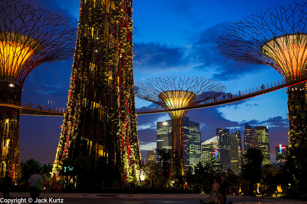 """21 DECEMBER 2012 - SINGAPORE, SINGAPORE:   The skyline of the Supertree Grove behind the """"supertrees"""" in Gardens by the Bay in Singapore. Gardens by the Bay is a 250 acre park of reclaimed land in central Singapore. It is adjacent to the Marina Reservoir. The park consists of three waterfront gardens: Bay South Garden, Bay East Garden and Bay Central Garden.     PHOTO BY JACK KURTZ"""