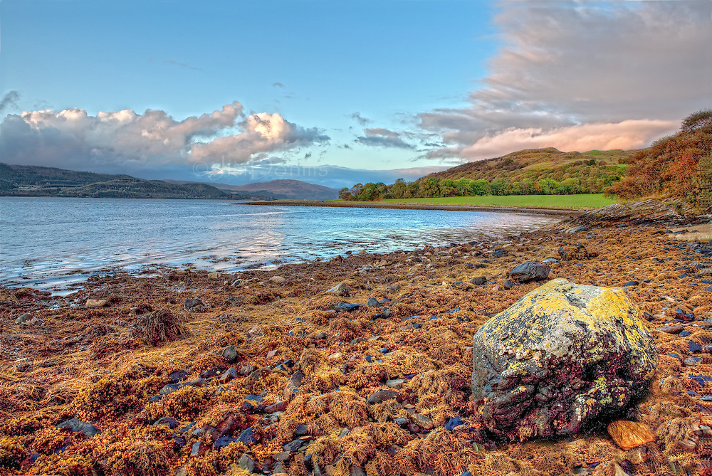 Loch Fyne is located on the western side of Scotland not too far from Glasgow.