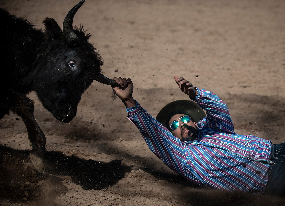 rer022517a/metro/02.25. 2017/Roberto E. Rosales<br /> Andrew Galloway(Cq) of Albuquerque was a bit rusty during the the steer wrestling event at the Bosque Farms Rodeo Saturday afternoon.  Here he tries to bring down the steer by one horn in the process. The Bosque Farms Rodeo kicked off the rodeo season in New Mexico. <br /> Roberto E. Rosales/Albuquerque Journal