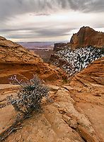 Canyonlands National Park desert landscape.