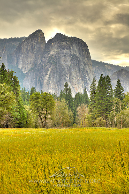 Cook's Meadow, Yosemite