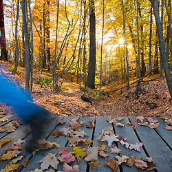 A man hikes over a footbridge near the Presumpscot River in Portland, Maine. Fall.  Model Released.